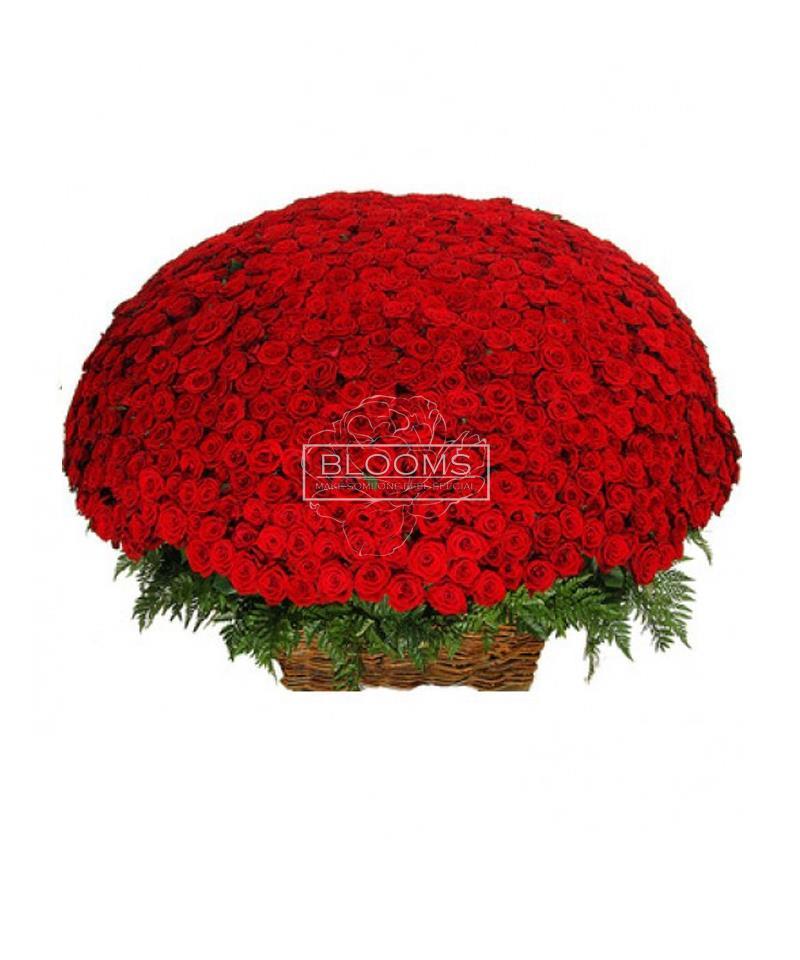Blooms.ge image